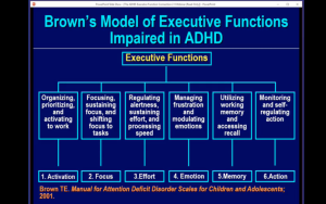 Dr. Thomas Brown Screen Shot EFD