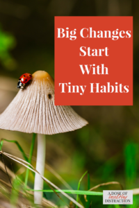 Make big changes in your life by starting with tiny habits