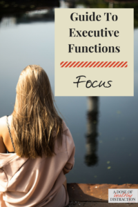 guide to executive functions focus