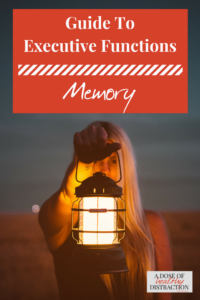 guide to executive functions memory